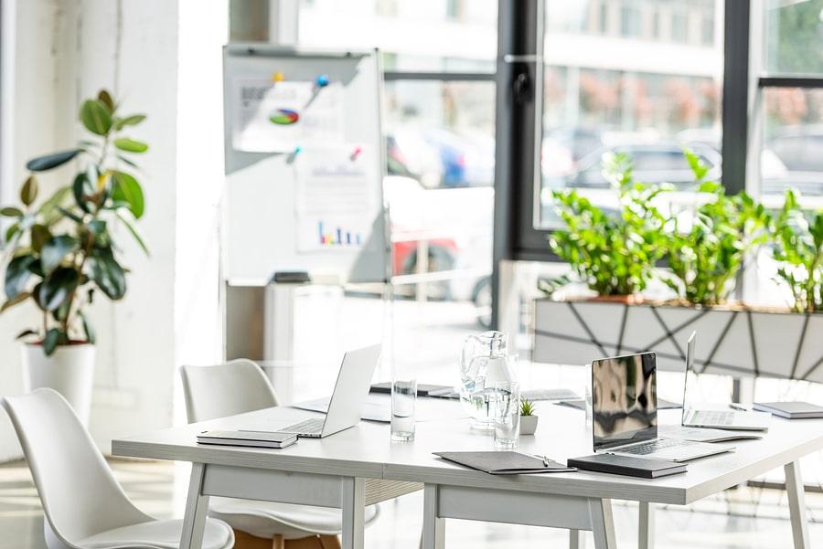 interior design consultant green white concept